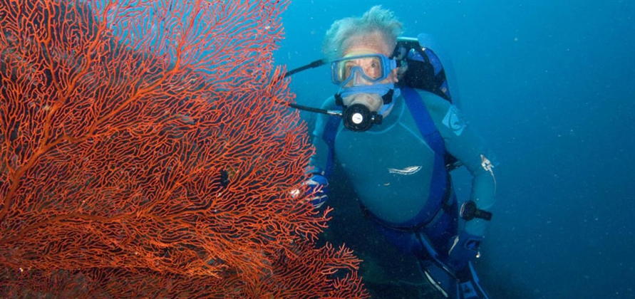 Carnival Corporation partners with oceans expert Jean-Michel Cousteau