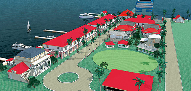 BVI thinks big for 2015